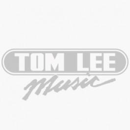MUSIC TREASURES CO. UKULELE Guitar Miniature With Case